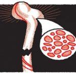 Perder peso pode levar a osteoporose e fraturas em idosos com obesidade