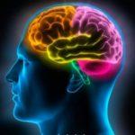 A biologia da crença – mente, corpo e o poder do pensamento – Evento Online