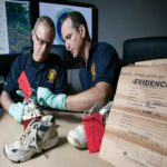 Por que pés humanos têm sido achados em praias dos eua e canadá? –